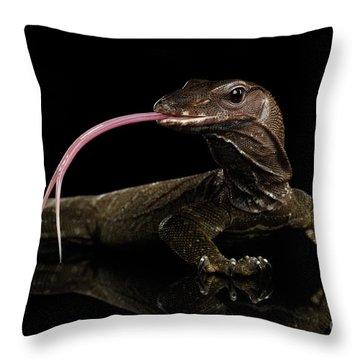 Close-up Varanus Rudicollis Isolated On Black Background Throw Pillow by Sergey Taran