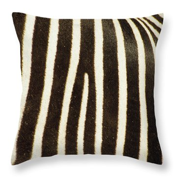 Close View Of A Zebras Stripes Throw Pillow