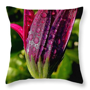 Closed Daisy With Rain Drops Throw Pillow