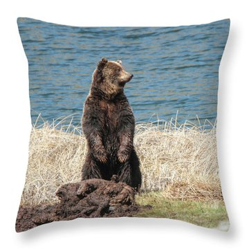 Closer Lok Throw Pillow