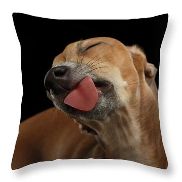 Funny Dog Throw Pillows Fine Art America