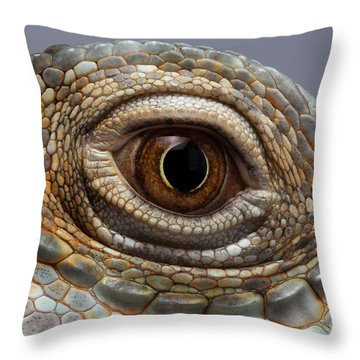 Closeup Eye Of Green Iguana Throw Pillow