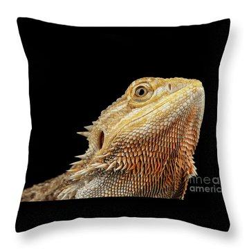 Throw Pillow featuring the photograph Closeup Head Of Bearded Dragon Llizard, Agama, Isolated Black Background by Sergey Taran