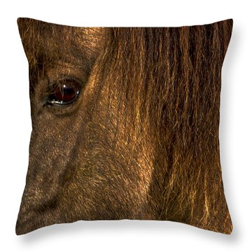 Closeup Of An Icelandic Horse #2 Throw Pillow