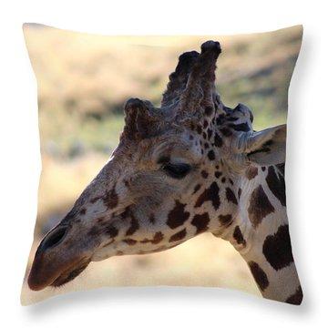 Closeup Of Giraffe Throw Pillow by Colleen Cornelius