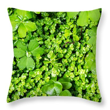 Lush Green Soothing Organic Sense Throw Pillow