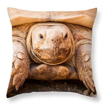 Closeup Of Large Galapagos Tortoise Throw Pillow by Susan Schmitz