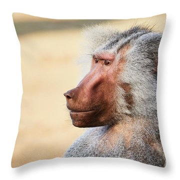 Throw Pillow featuring the photograph Closeup Portrait Of A Male Baboon by Nick Biemans