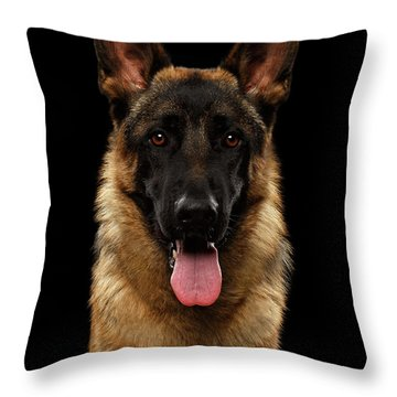 Closeup Portrait Of German Shepherd On Black  Throw Pillow