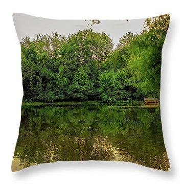 Closter Nature Center Throw Pillow