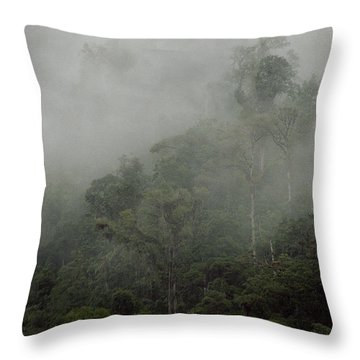 Cloud Forest Throw Pillow