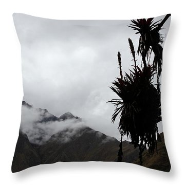 Cloud Forest Musings Throw Pillow