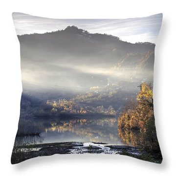 Mist In The Evening Throw Pillow