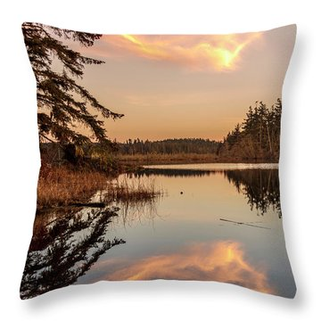 Cloud On Cranberry Lake Throw Pillow