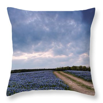 Cloud Vortex Over Bluebonnets At Muleshoe Bend Recreation Area - Spicewood Texas Hill Country Throw Pillow