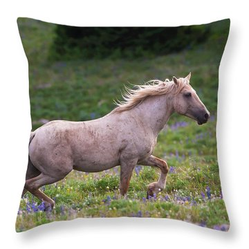 Cloud- Wild Stallion Of The West Throw Pillow