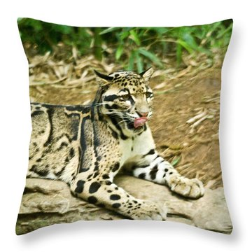 Clouded Leopard 1 Throw Pillow