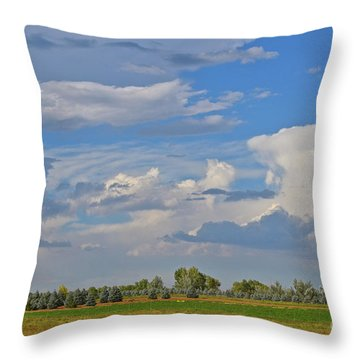 Clouds Aboive The Tree Farm Throw Pillow
