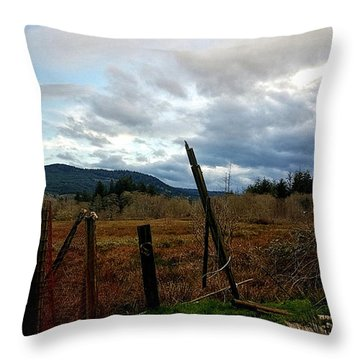 Throw Pillow featuring the photograph Clouds And Field by Chriss Pagani