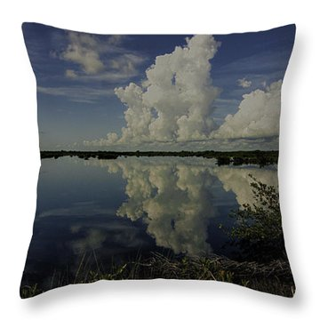 Clouds And Reflections Throw Pillow