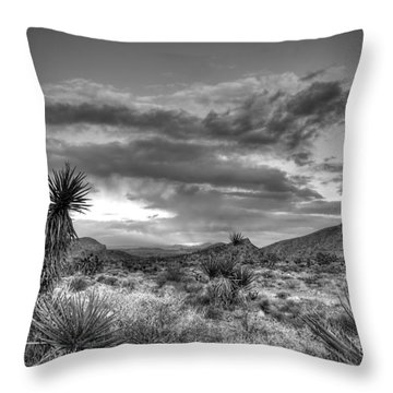 Clouds And Yucca Throw Pillow