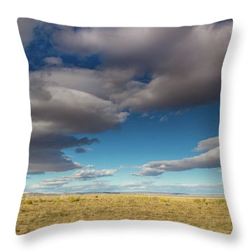 Clouds In Fields Oregon Throw Pillow