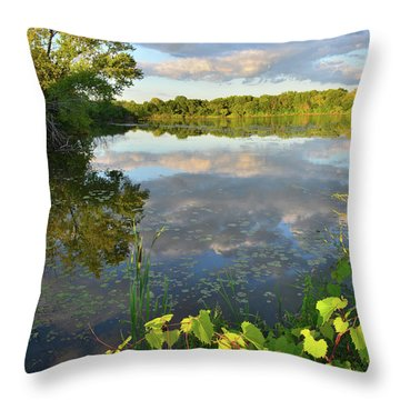 Clouds Mirrored In Snug Harbor Throw Pillow