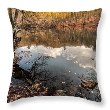 Clouds On The Lake Throw Pillow
