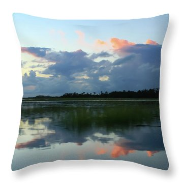 Clouds Over Marsh Throw Pillow by Patricia Schaefer