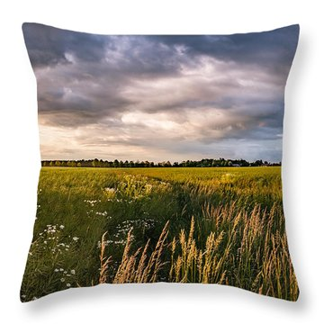 Throw Pillow featuring the photograph Clouds Over The Fields by Dmytro Korol
