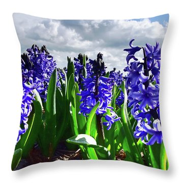 Clouds Over The Purple Hyacinth Field Throw Pillow by Mihaela Pater