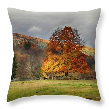 Throw Pillow featuring the photograph Clouds Part Over Marsh Billings-rockefeller Nhp by Jeff Folger