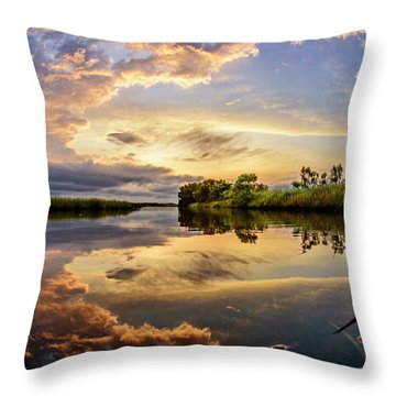 Clouds Reflections Throw Pillow