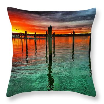 Seagull In The Sun Throw Pillow