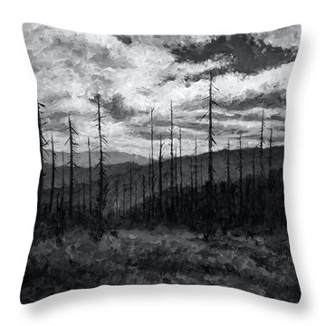 Cloudscape 3 Throw Pillow