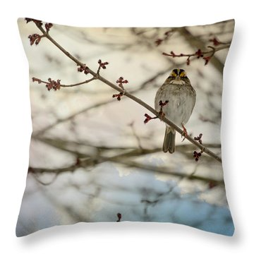 Throw Pillow featuring the photograph Cloudy Finch by Trish Tritz
