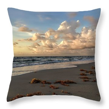 Cloudy Horizon  Throw Pillow