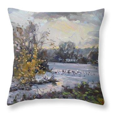 Cloudy Sunset In Niagara Falls River  Throw Pillow