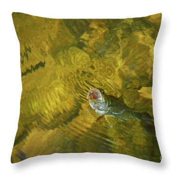 Clouser Smallmouth Throw Pillow