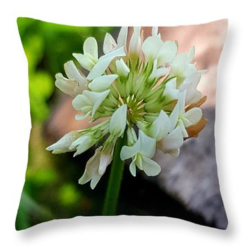 Clover #2 Throw Pillow