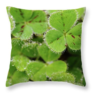 Cloverland Frosted Over Throw Pillow