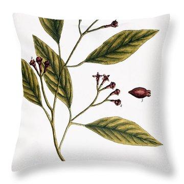 Cloves, 1735 Throw Pillow by Granger