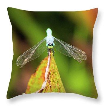 Clown Face Dragonfly Throw Pillow