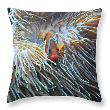 Clown Fish Throw Pillow by Michael Peychich