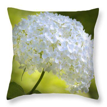 Cluster Throw Pillow by John Poon