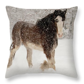 Clydesdale In The Snow Throw Pillow