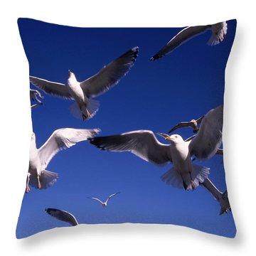 Cnrg0302 Throw Pillow