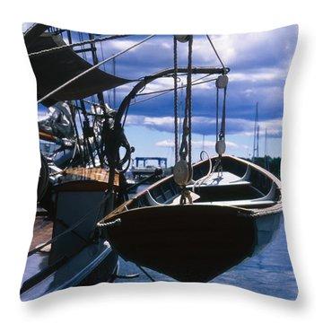 Cnrh0601 Throw Pillow