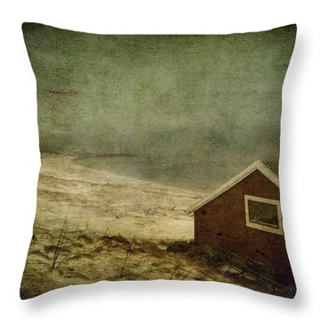 Coast Of Norway Throw Pillow