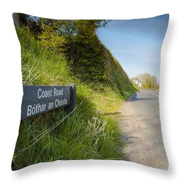 Coast Road Throw Pillow